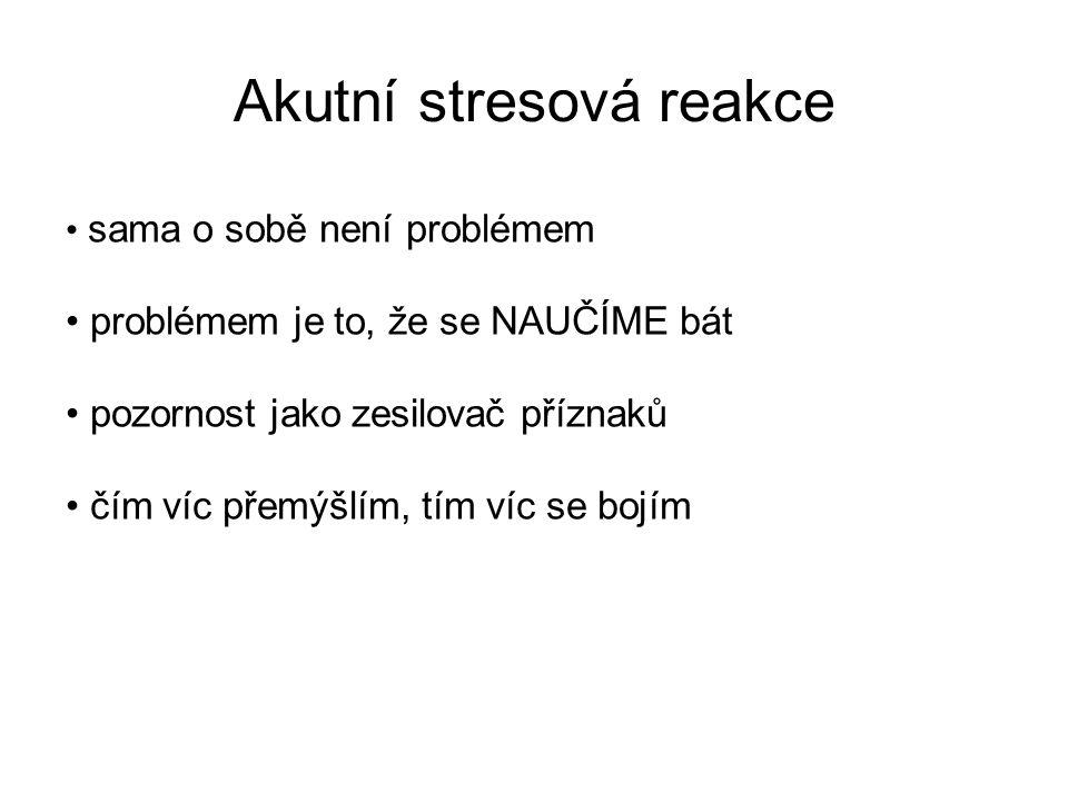 Akutní stresová reakce