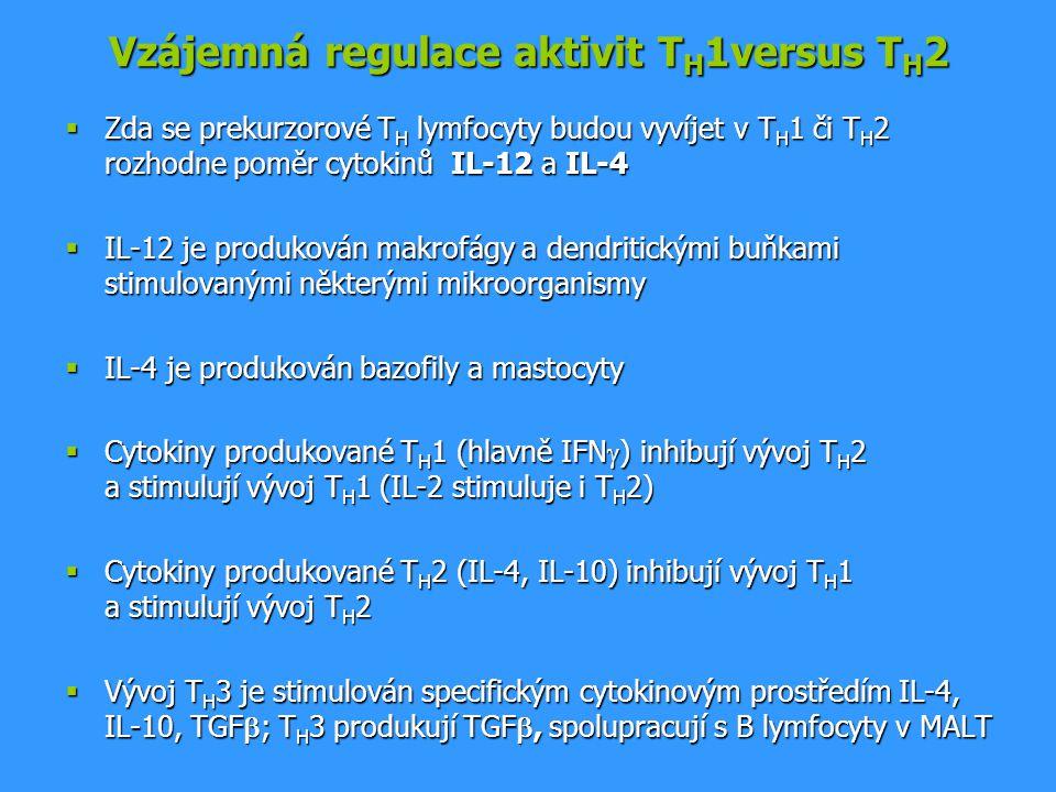 Vzájemná regulace aktivit TH1versus TH2