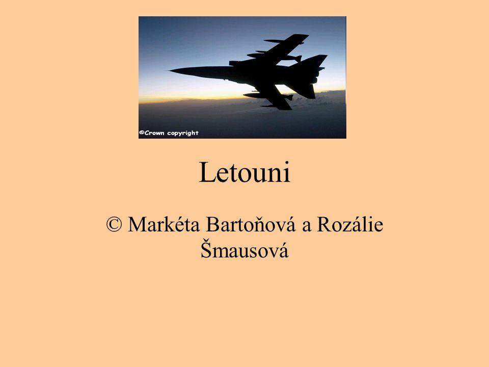 © Markéta Bartoňová a Rozálie Šmausová