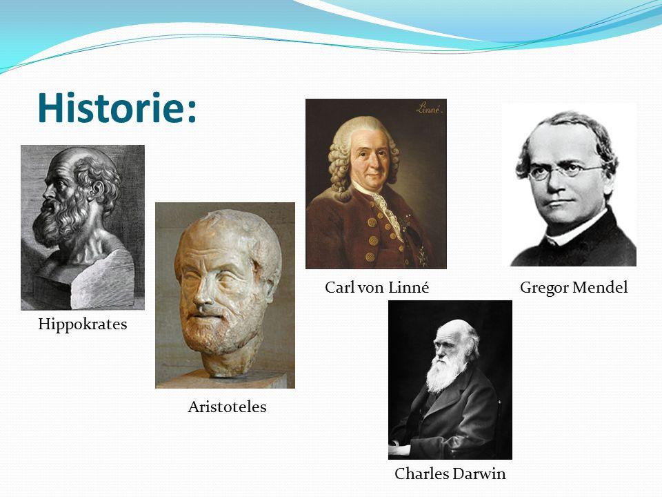 Historie: Carl von Linné Gregor Mendel Hippokrates Aristoteles