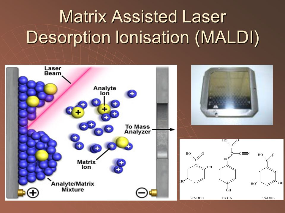 Matrix Assisted Laser Desorption Ionisation (MALDI)