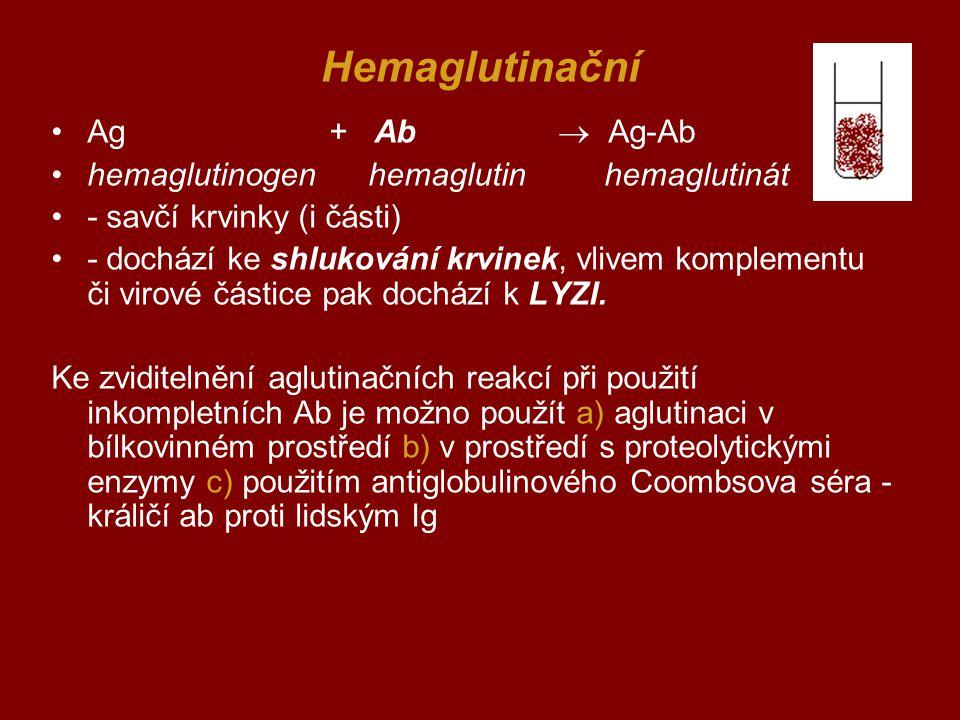Hemaglutinační Ag + Ab  Ag-Ab hemaglutinogen hemaglutin hemaglutinát