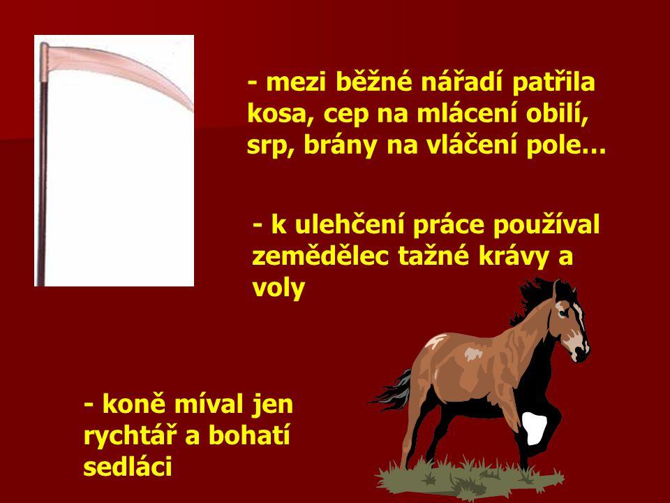 - mezi běžné nářadí patřila kosa, cep na mlácení obilí, srp, brány na vláčení pole…