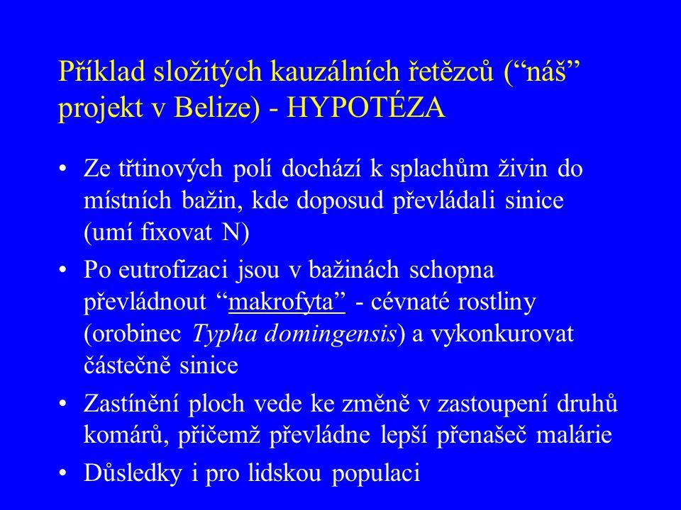 Příklad složitých kauzálních řetězců ( náš projekt v Belize) - HYPOTÉZA