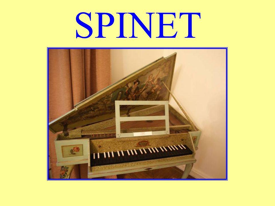 SPINET