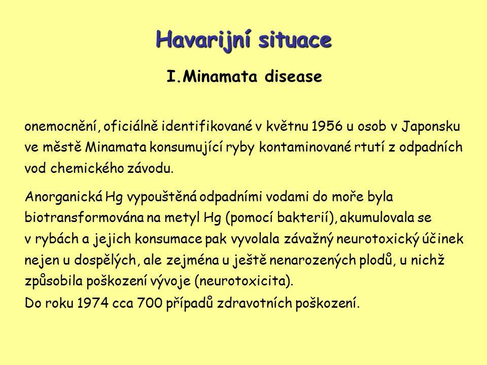 Havarijní situace I.Minamata disease