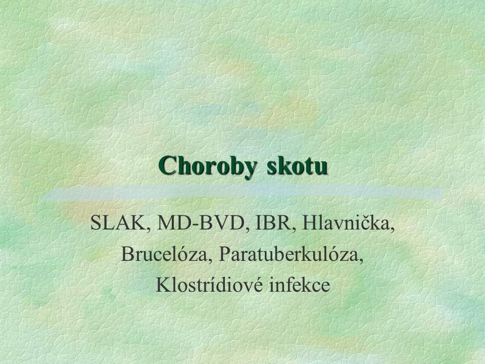 Choroby skotu SLAK, MD-BVD, IBR, Hlavnička,