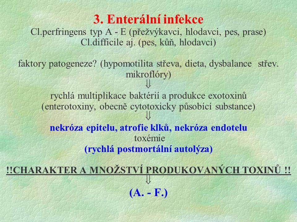 3. Enterální infekce (A. - F.)