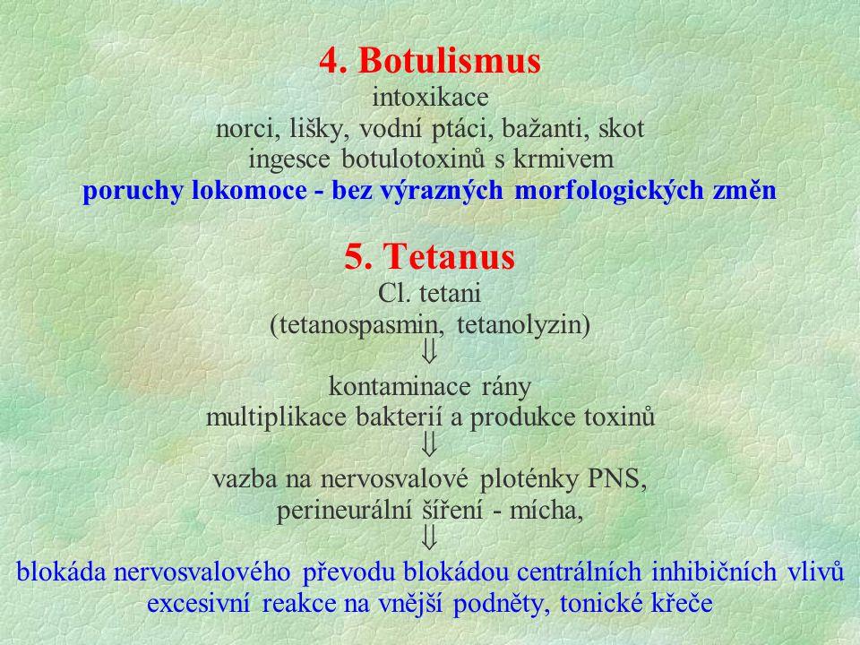 4. Botulismus 5. Tetanus intoxikace