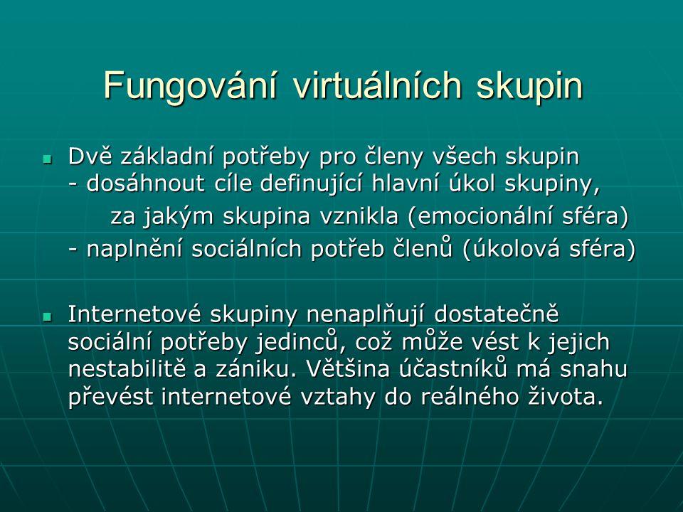 Fungování virtuálních skupin