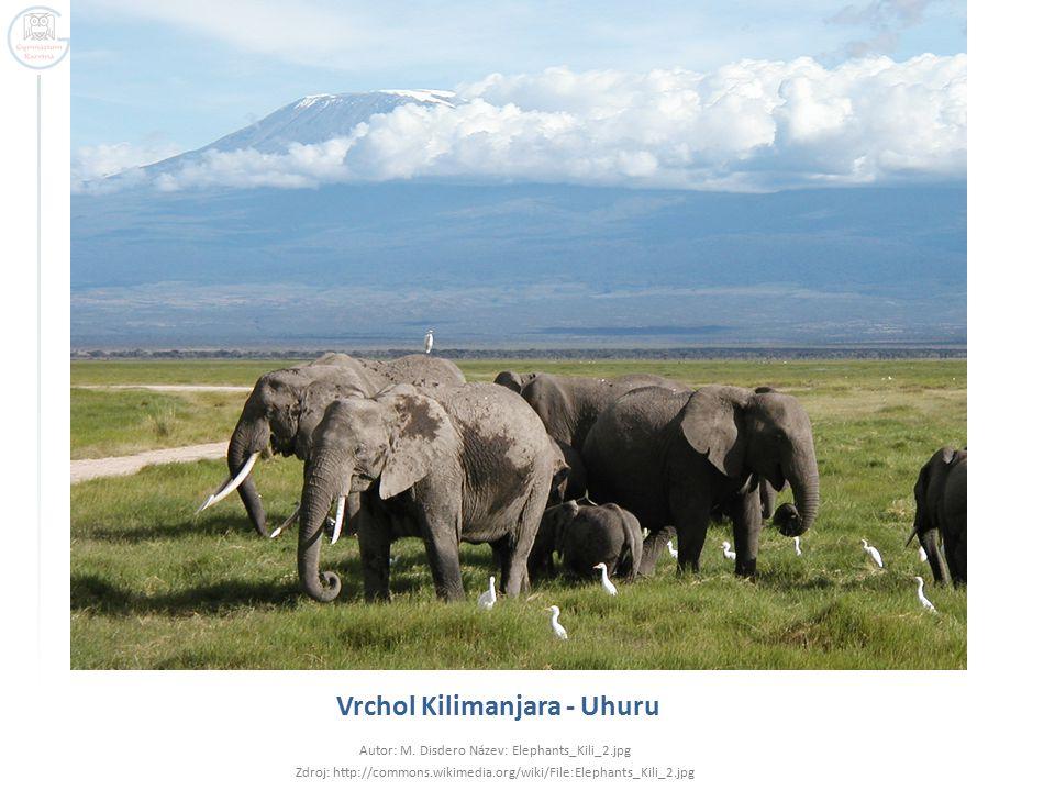 Vrchol Kilimanjara - Uhuru