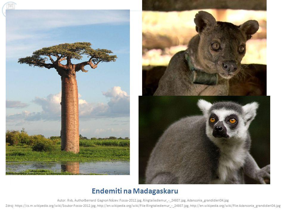 Endemiti na Madagaskaru