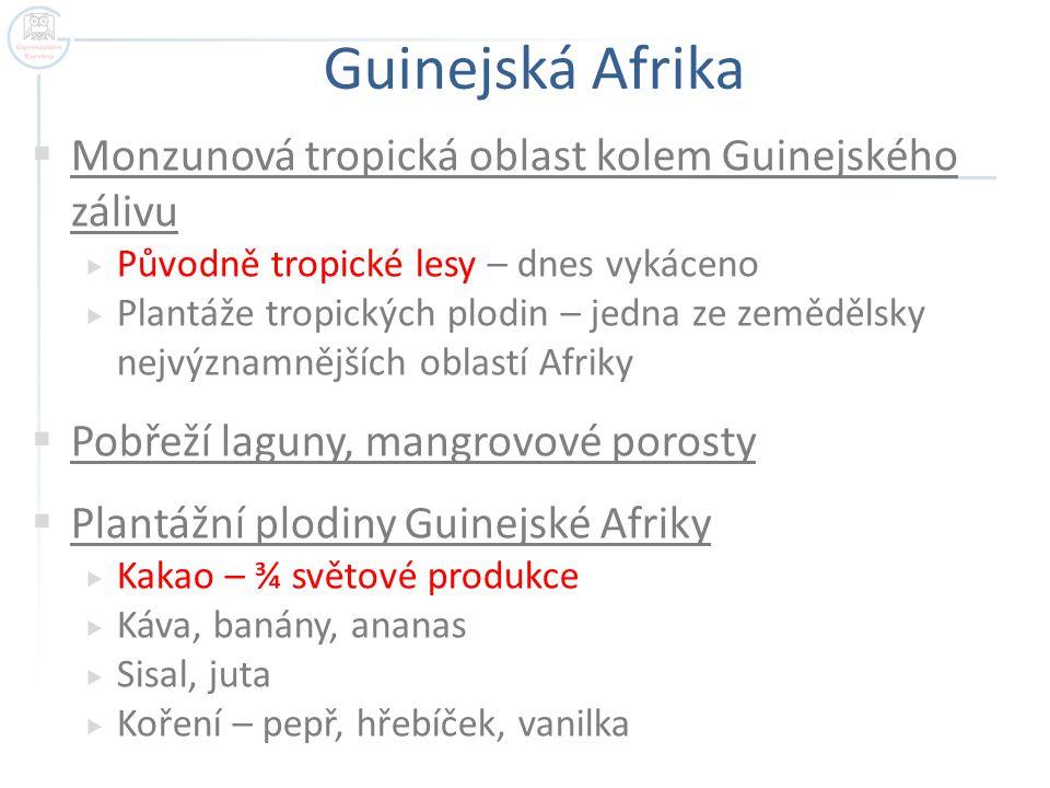 Guinejská Afrika Monzunová tropická oblast kolem Guinejského zálivu