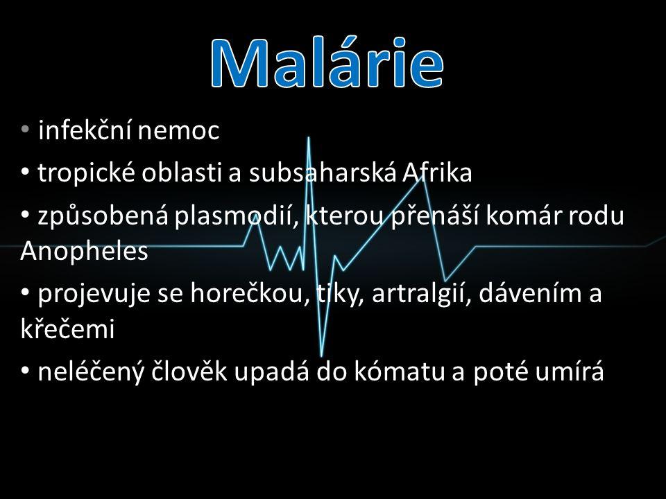 Malárie infekční nemoc tropické oblasti a subsaharská Afrika