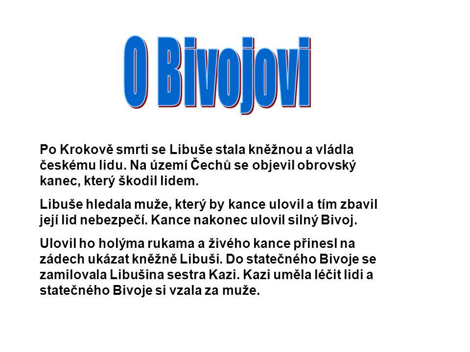 O Bivojovi Po Krokově smrti se Libuše stala kněžnou a vládla českému lidu. Na území Čechů se objevil obrovský kanec, který škodil lidem.
