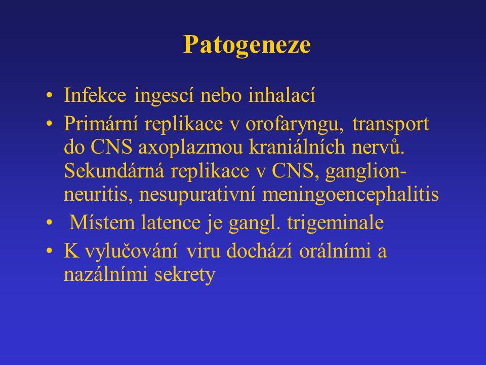 Patogeneze Infekce ingescí nebo inhalací