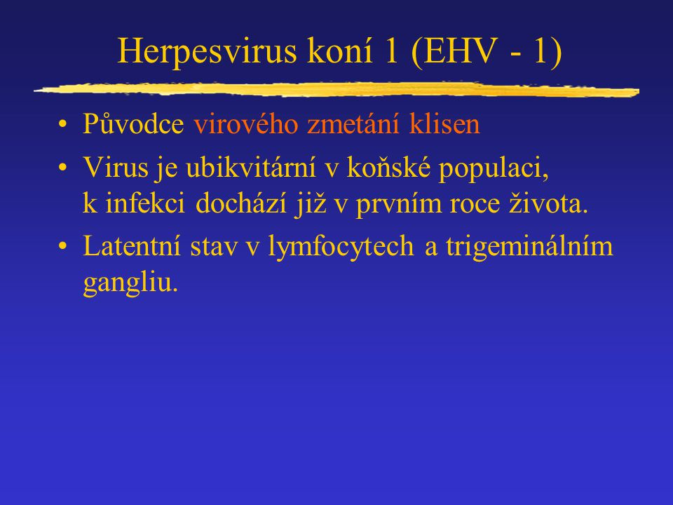Herpesvirus koní 1 (EHV - 1)