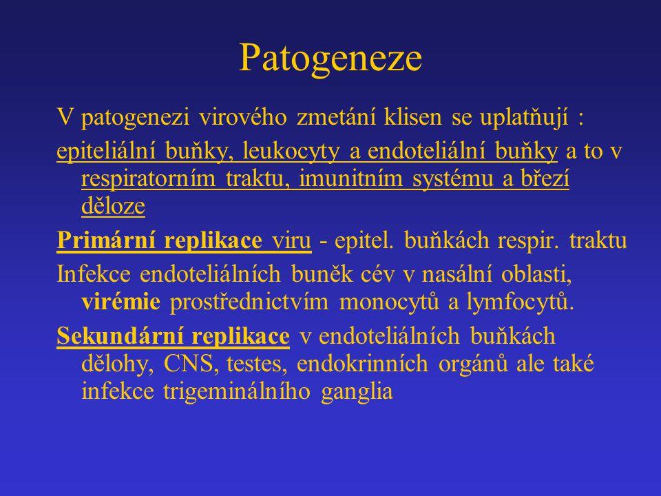 Patogeneze V patogenezi virového zmetání klisen se uplatňují :