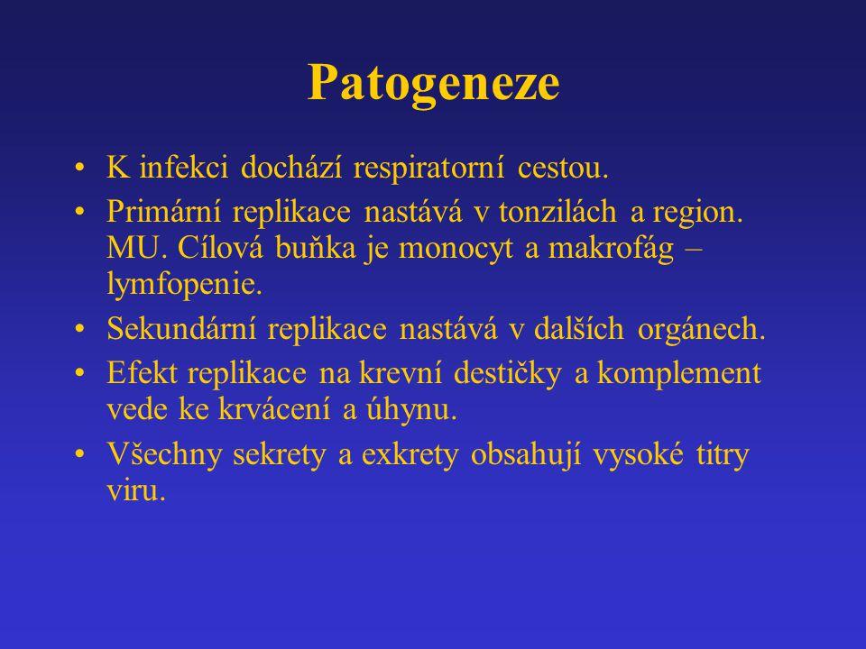 Patogeneze K infekci dochází respiratorní cestou.