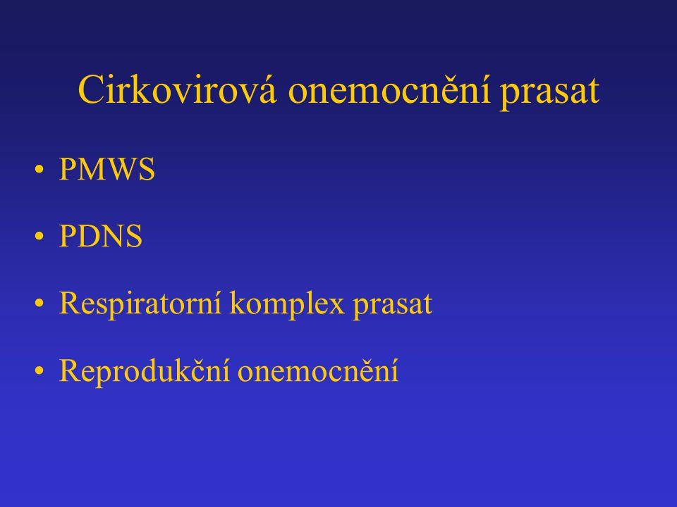 Cirkovirová onemocnění prasat