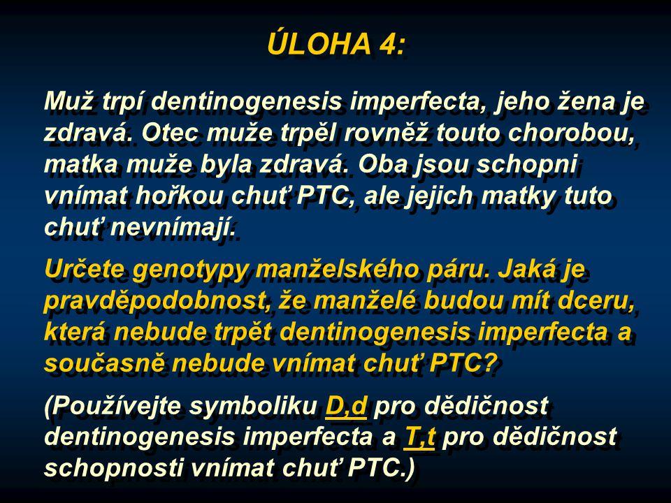 ÚLOHA 4: