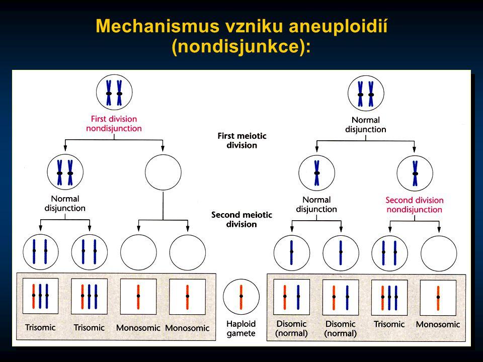 Mechanismus vzniku aneuploidií (nondisjunkce):