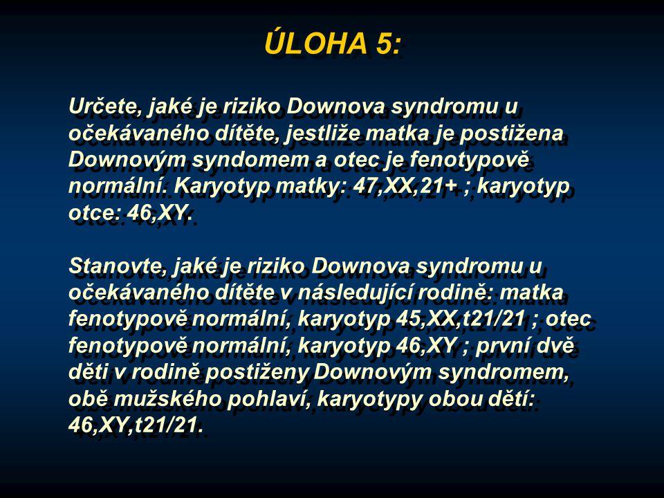 ÚLOHA 5: