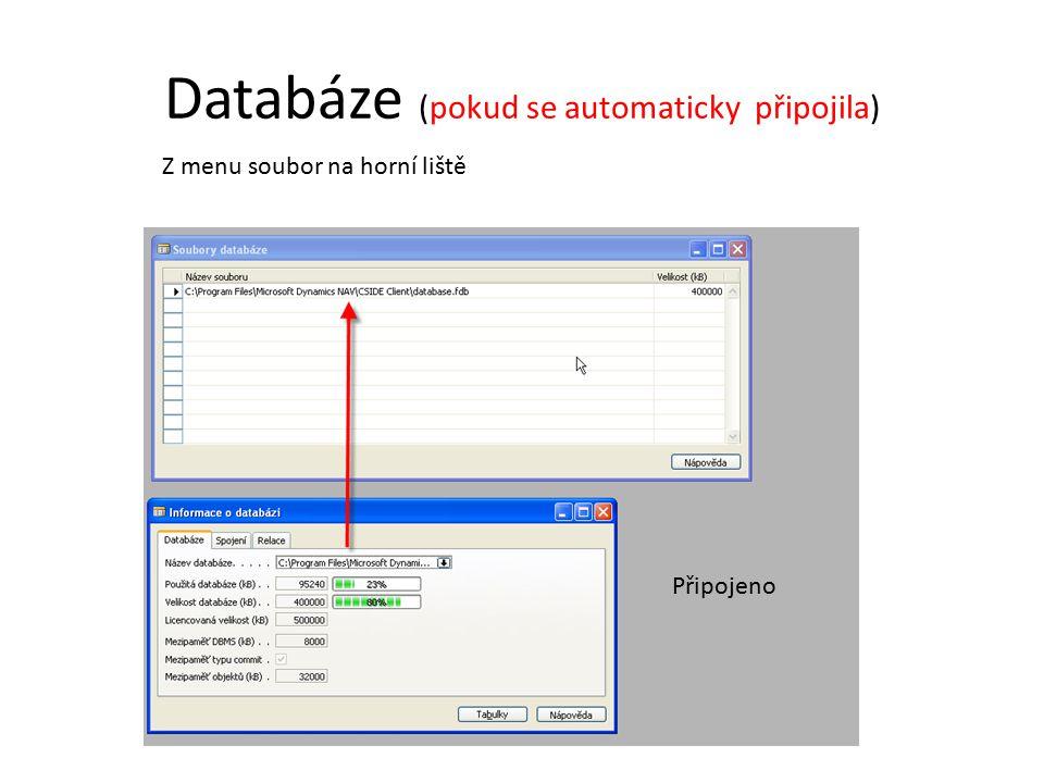 Databáze (pokud se automaticky připojila)