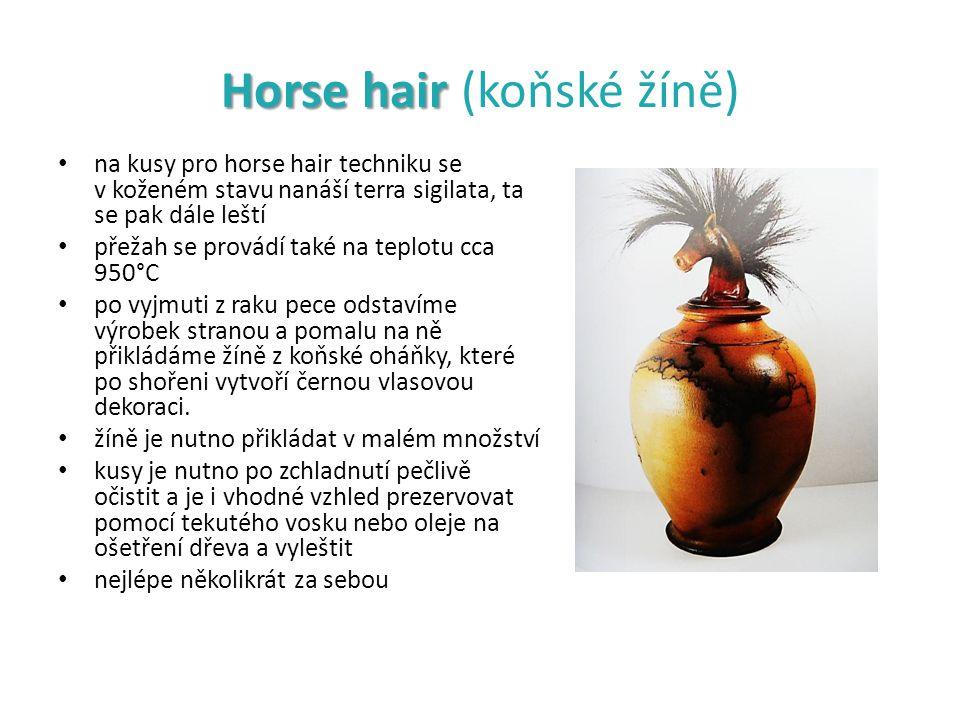 Horse hair (koňské žíně)