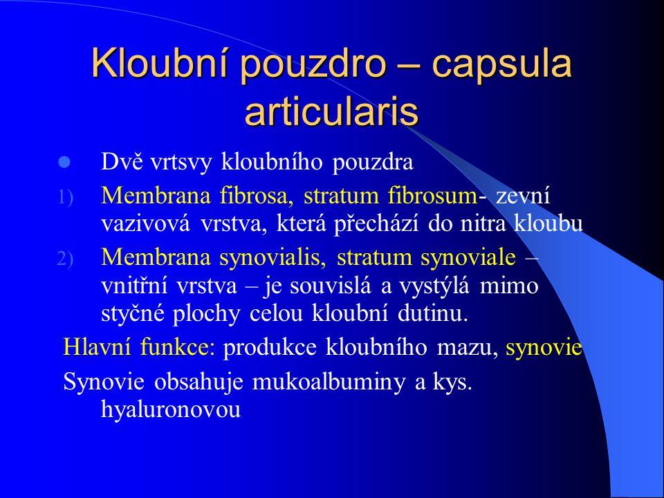 Kloubní pouzdro – capsula articularis