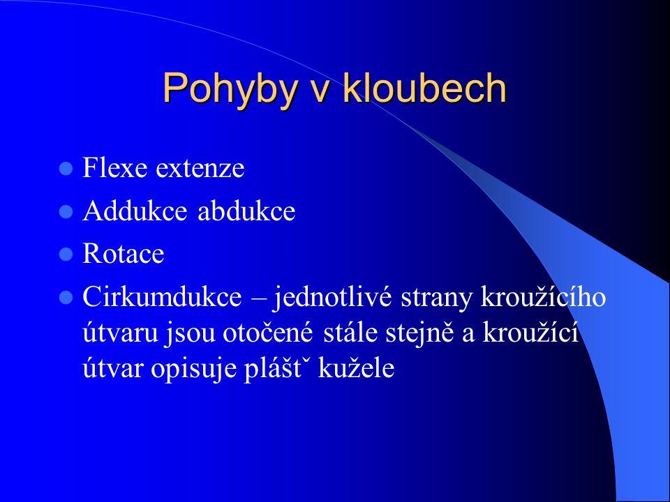 Pohyby v kloubech Flexe extenze Addukce abdukce Rotace