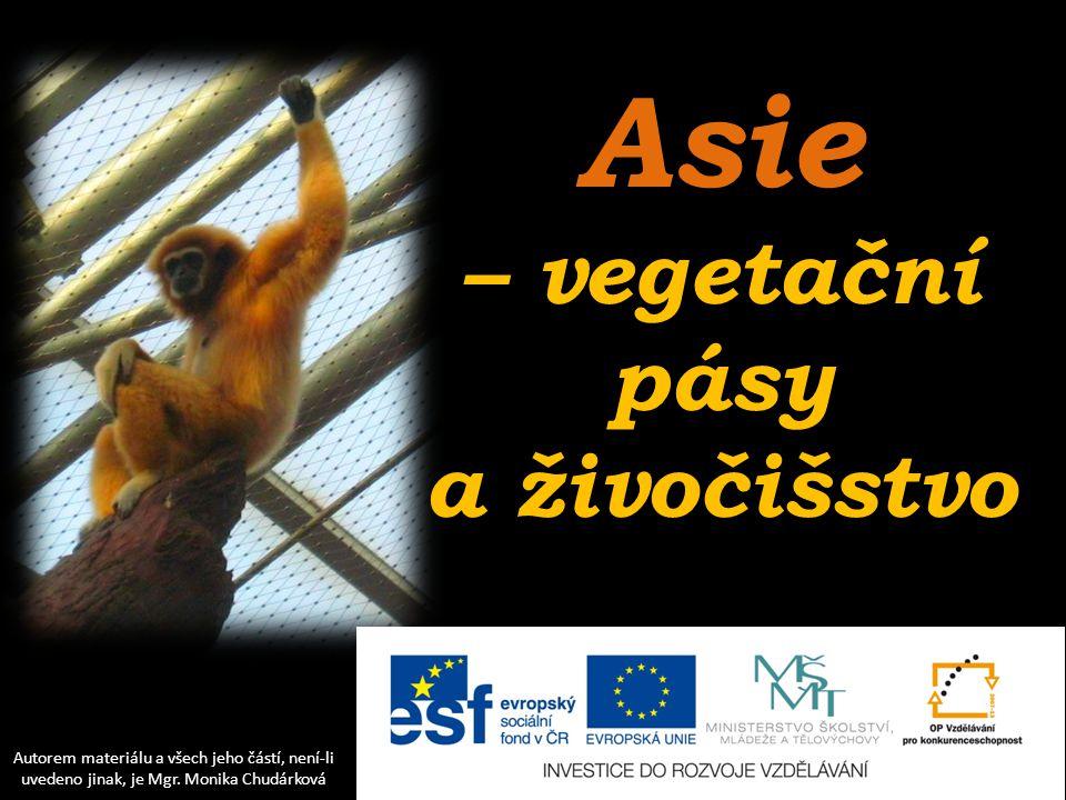 Asie – vegetační pásy a živočišstvo
