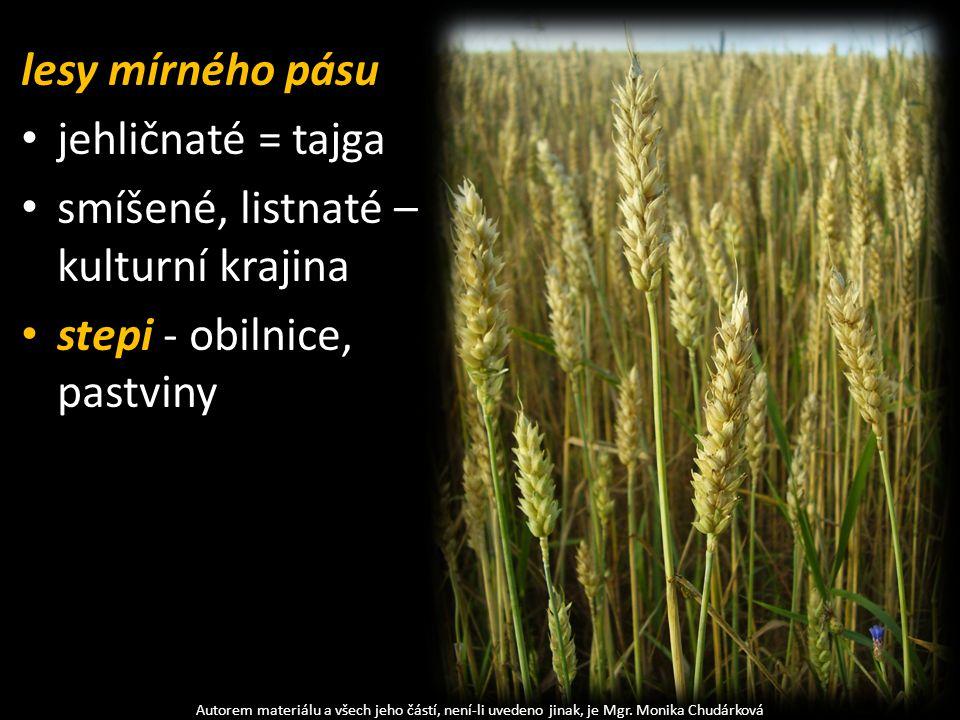 smíšené, listnaté – kulturní krajina stepi - obilnice, pastviny