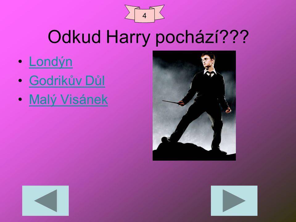 4 Odkud Harry pochází Londýn Godrikův Důl Malý Visánek