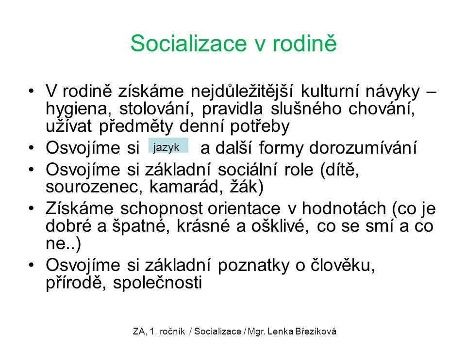 ZA, 1. ročník / Socializace / Mgr. Lenka Březíková
