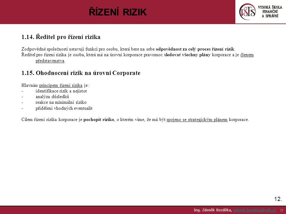 ŘÍZENÍ RIZIK 1.14. Ředitel pro řízení rizika