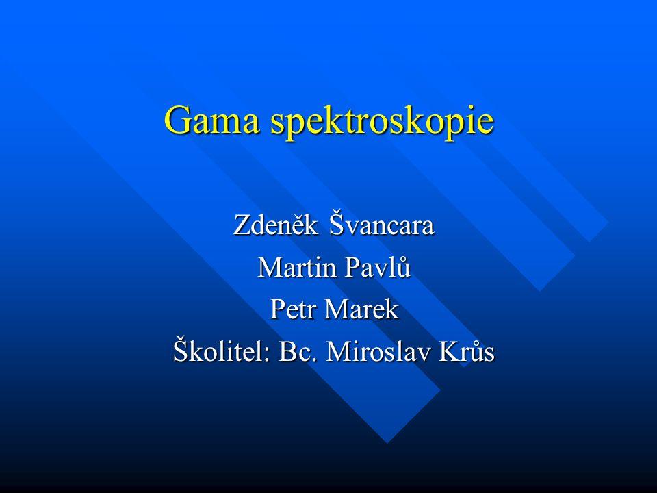Zdeněk Švancara Martin Pavlů Petr Marek Školitel: Bc. Miroslav Krůs
