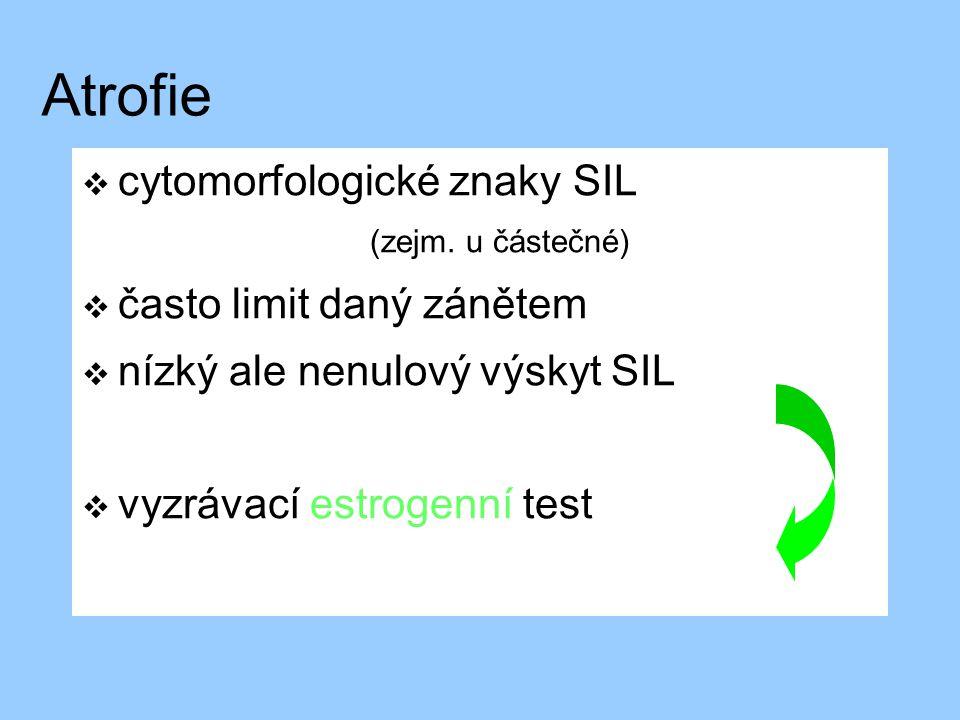 Atrofie cytomorfologické znaky SIL (zejm. u částečné)