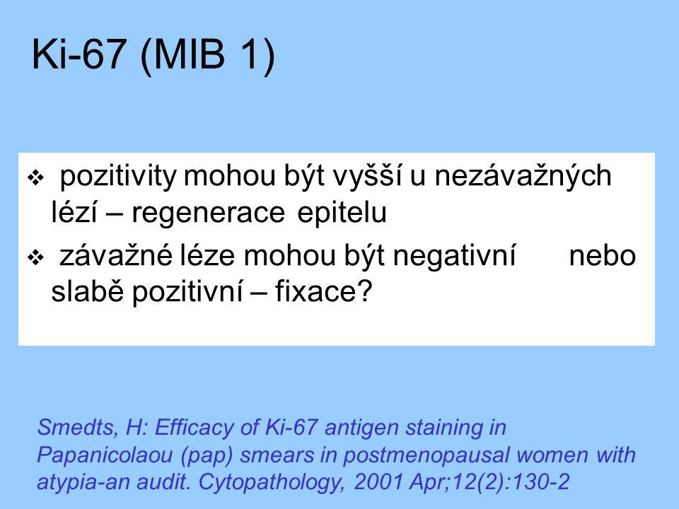 Ki-67 (MIB 1) pozitivity mohou být vyšší u nezávažných lézí – regenerace epitelu. závažné léze mohou být negativní nebo slabě pozitivní – fixace