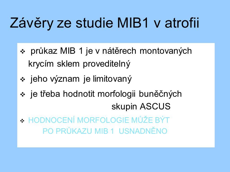 Závěry ze studie MIB1 v atrofii