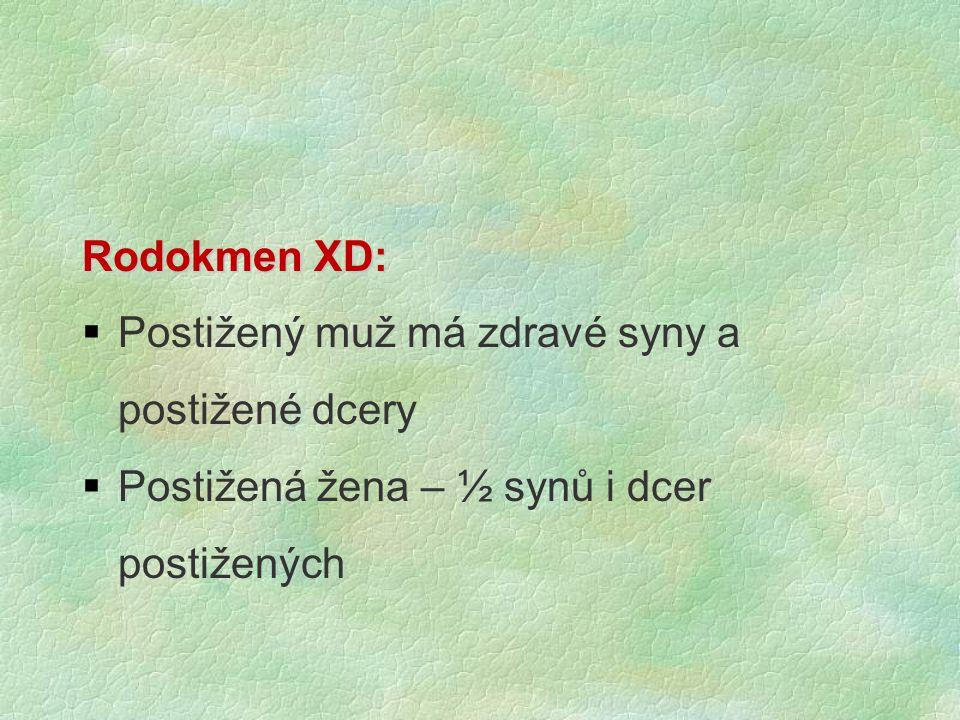 Rodokmen XD: Postižený muž má zdravé syny a postižené dcery.
