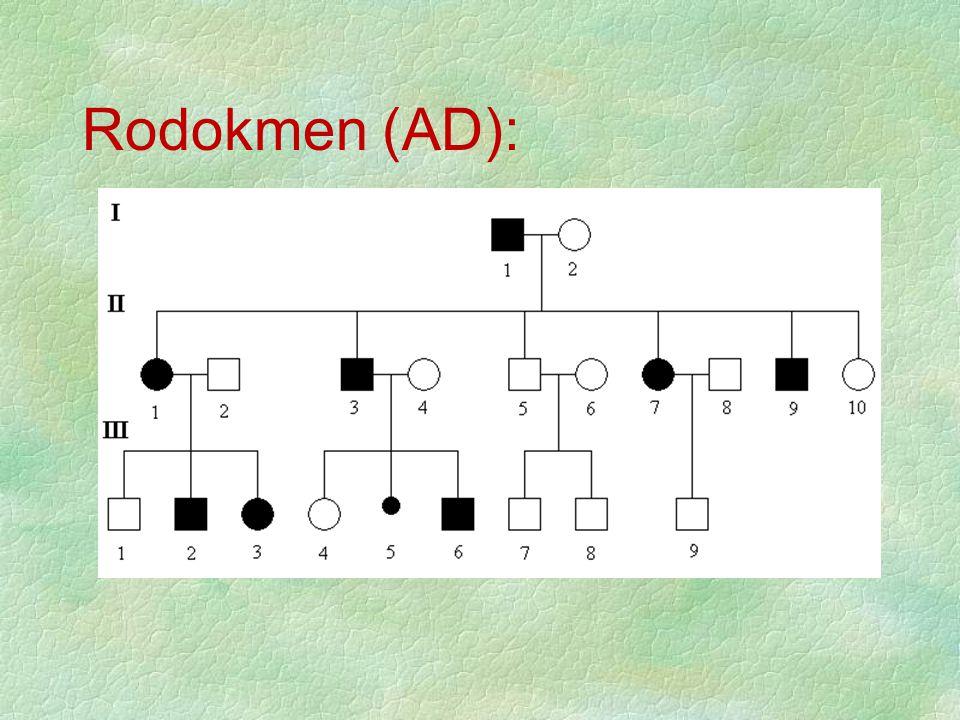 Rodokmen (AD):