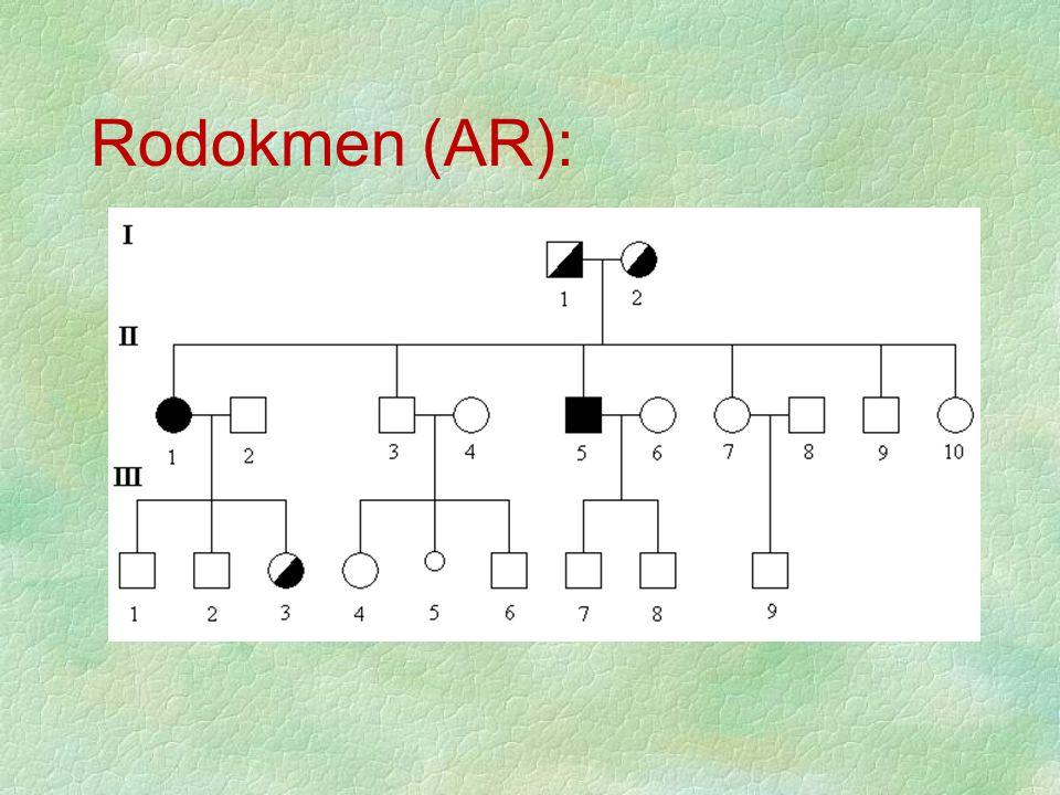 Rodokmen (AR):