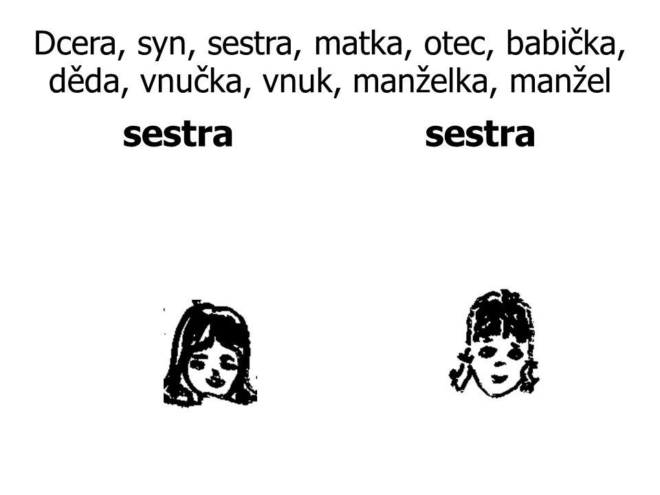 Dcera, syn, sestra, matka, otec, babička, děda, vnučka, vnuk, manželka, manžel