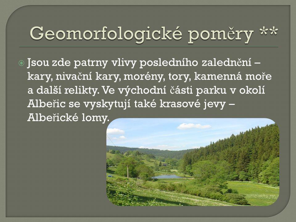 Geomorfologické poměry **