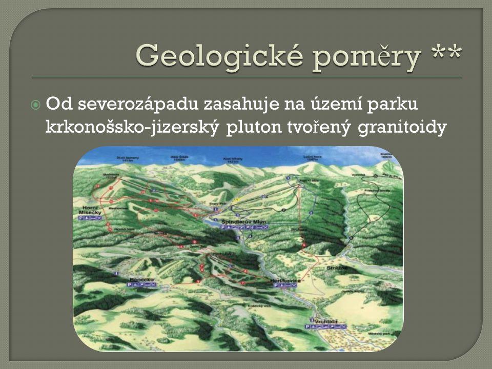 Geologické poměry ** Od severozápadu zasahuje na území parku krkonošsko-jizerský pluton tvořený granitoidy.
