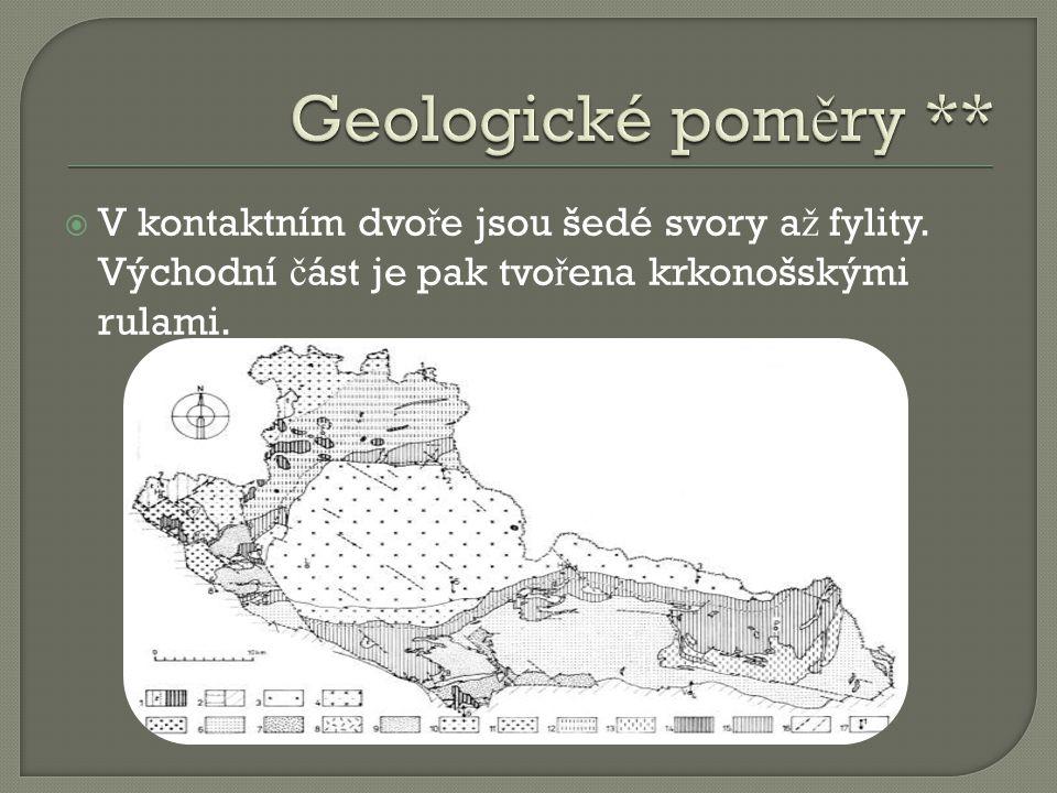 Geologické poměry ** V kontaktním dvoře jsou šedé svory až fylity.