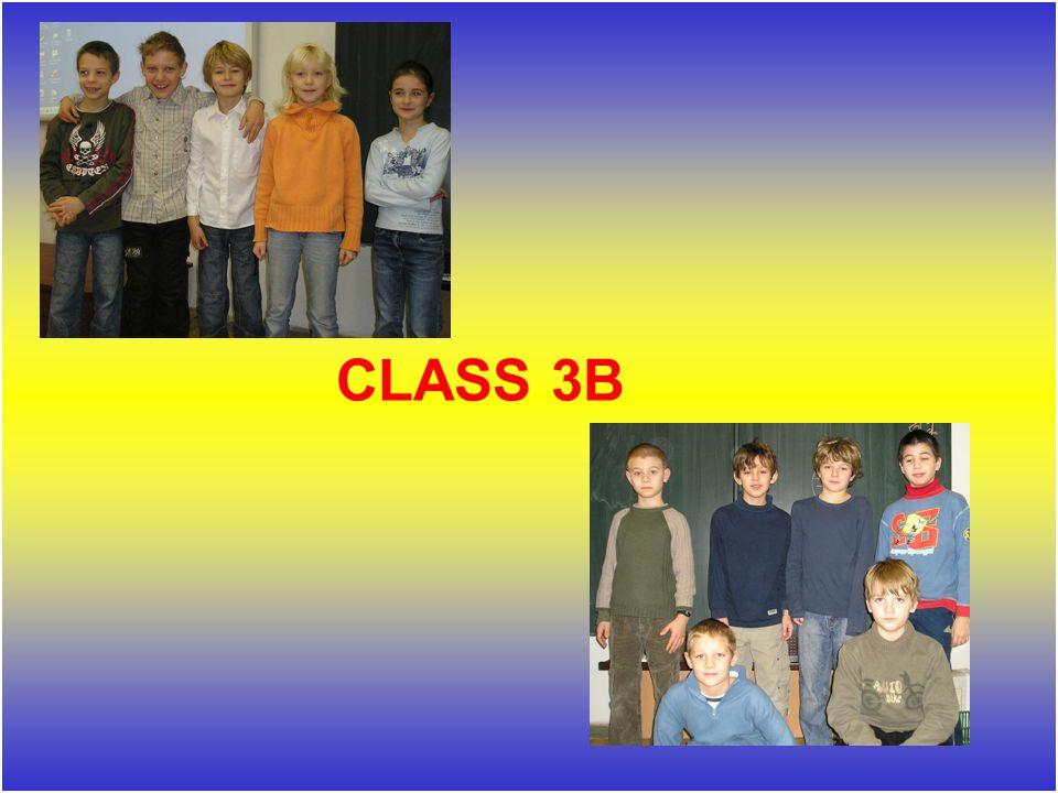 CLASS 3B