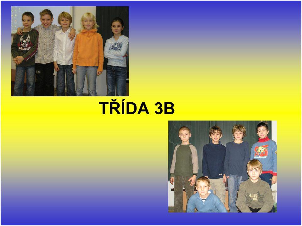 TŘÍDA 3B