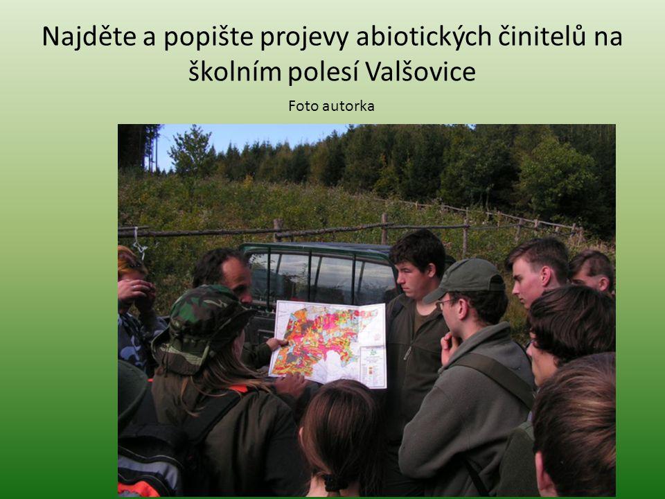 Najděte a popište projevy abiotických činitelů na školním polesí Valšovice
